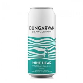Dungarvan Mine Head